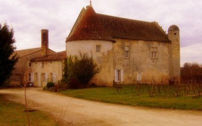 Old farmhouse - Entre Deux Mers, France