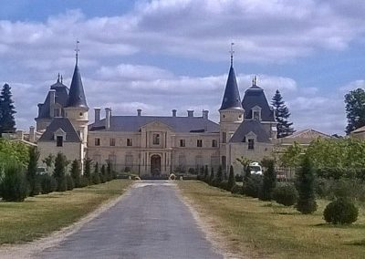 Alley leading to a chateau in the Bordeaux region